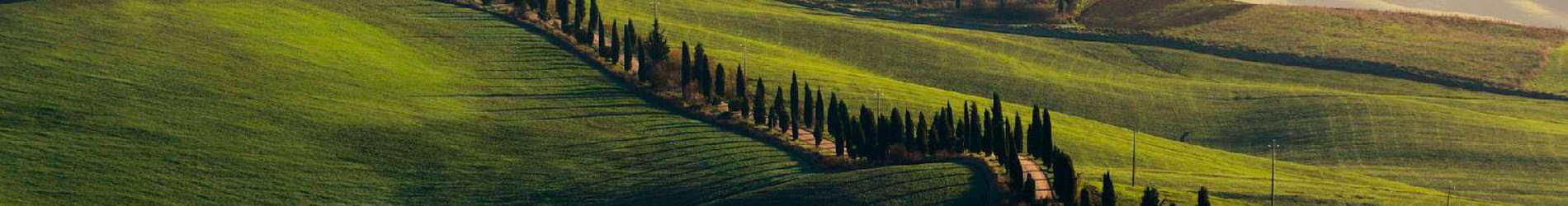 services: renting a villa in tuscany has never been easier